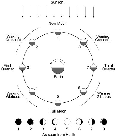 moon phases names. Phases of the Moon