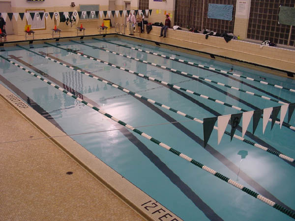 Tufts University Men 39 S Swimming And Diving Homepage